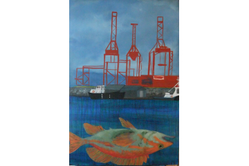 Orange Rockfish